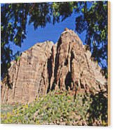 Along Emeral Pools Trail - Zion Wood Print
