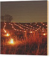 Along Hagerstown Pike 12 Wood Print by Judi Quelland