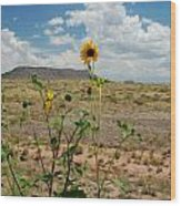 Along Route 66 In Arizona Wood Print