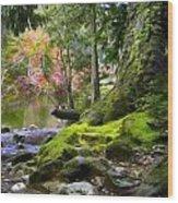 Along Sooke River Wood Print