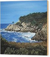 Along The California Coast Wood Print