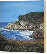 Along The California Coast Wood Print
