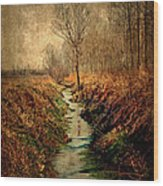 Along The Canal Wood Print