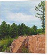 Along The Chikanashing Trail Wood Print