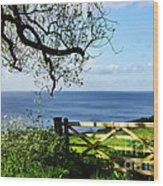 Along The Coastal Path - Lyme Regis Wood Print