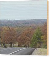 Along The Country Highway 1 Wood Print