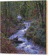 Along The Creek Wood Print