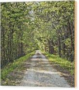 Along The Katy Trail Wood Print