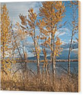 Along The Lake Wood Print