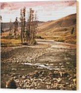 Along The Larmar River 2 Wood Print by Marty Koch