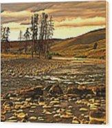 Along The Larmar River Wood Print