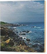 Along The Marginal Way Wood Print