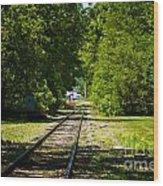 Along The Rails Wood Print