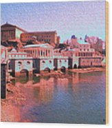 Along The Schuylkill At The Philadelphia Waterworks Wood Print