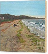 Along The Shore In Hyde Hole Beach Rhode Island Wood Print