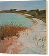 Along The Shore Wood Print