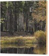 Along The Stream Wood Print