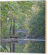Along The Wissahickon In October Wood Print