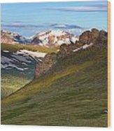 Along Trail Ridge Road Wood Print