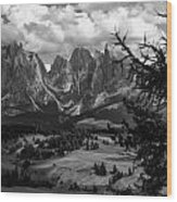 Alpes IIi Wood Print