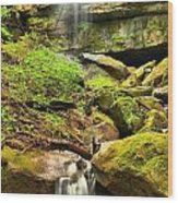 Alpha Falls Cascades Wood Print