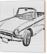 Alpine 5 Sports Car Illustration Wood Print