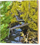 Alpine Creek  Wood Print