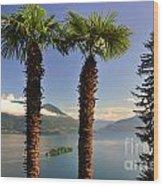 Alpine Lake With Island Wood Print