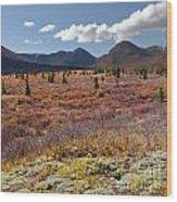 Alpine Landscape In Fall Wood Print
