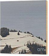 Alpine Pasture Wood Print