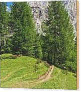 alpine path in Contrin Valley Wood Print