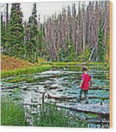 Alpine Pond On Alpine Pond Trail In Cedar Breaks National Monument-utah Wood Print