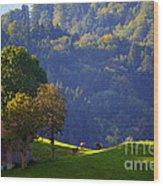 Alpine Summer Scene In Switzerland Wood Print