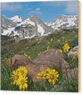 Alpine Sunflower Mountain Landscape Wood Print
