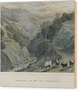 Alps. Shepherd In Germanasca Valley Wood Print