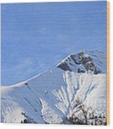 Alps Vista  Wood Print