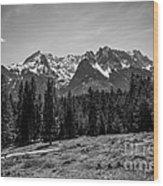 Alpspitze Till Zugspitze II Wood Print