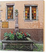 Alsace Fountain Wood Print