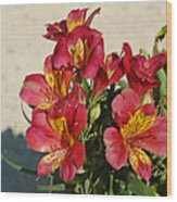 Alstroemeria In Pastel Wood Print