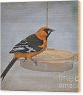 Altamira Oriole Wood Print