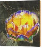 Altered Yellow Prickly Pear Flower Wood Print