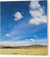 Altiplano In Bolivia Wood Print