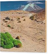 Altiplano Landscape Wood Print
