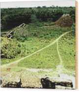 Altun Ha - Wide View Wood Print