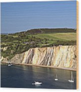 Alum Bay And The Coloured Sand Cliffs Wood Print