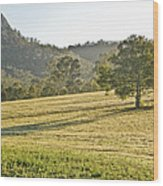 Amaroo Landscape - Paisaje De Amaroo Wood Print