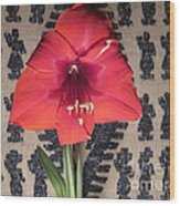 Amaryllis Flower With Guatemalan Mountain Blanket Wood Print by Elizabeth Stedman