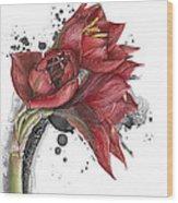 Amaryllis Flowers - 2. -  Elena Yakubovich Wood Print