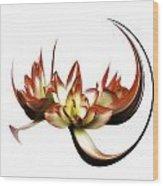 Amaryllis Phantasy Wood Print