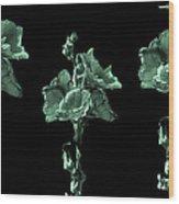 Amazing Flowers Wood Print